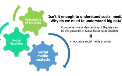 Social Big Data and Big Data – what's the connection?